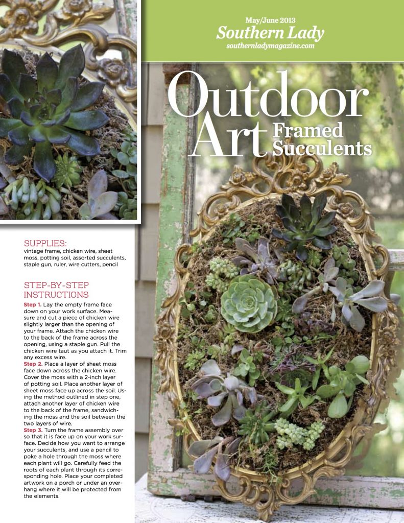 Outdoor Art Idea: Frame Succulents