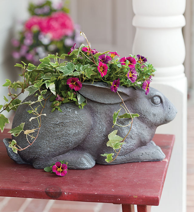 Cottontail Container