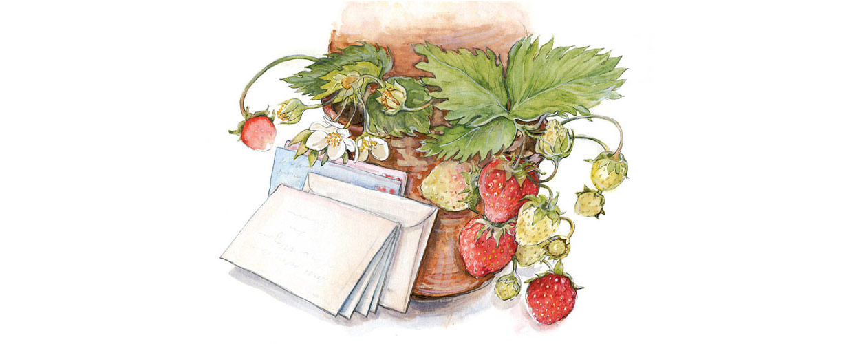 Watercolor painting of strawberry plant and stack of letters