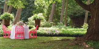 "A picture of an outdoor setting from ""Designing Life's Celebrations"""