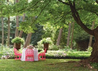 """A picture of an outdoor setting from """"Designing Life's Celebrations"""""""