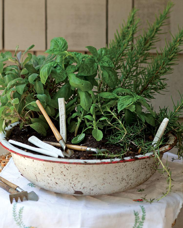 portable-herb-garden