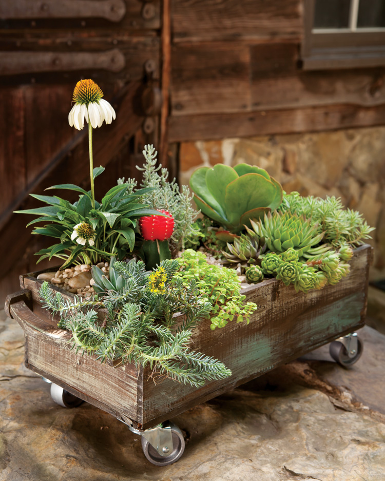 A picture of a creative floral container
