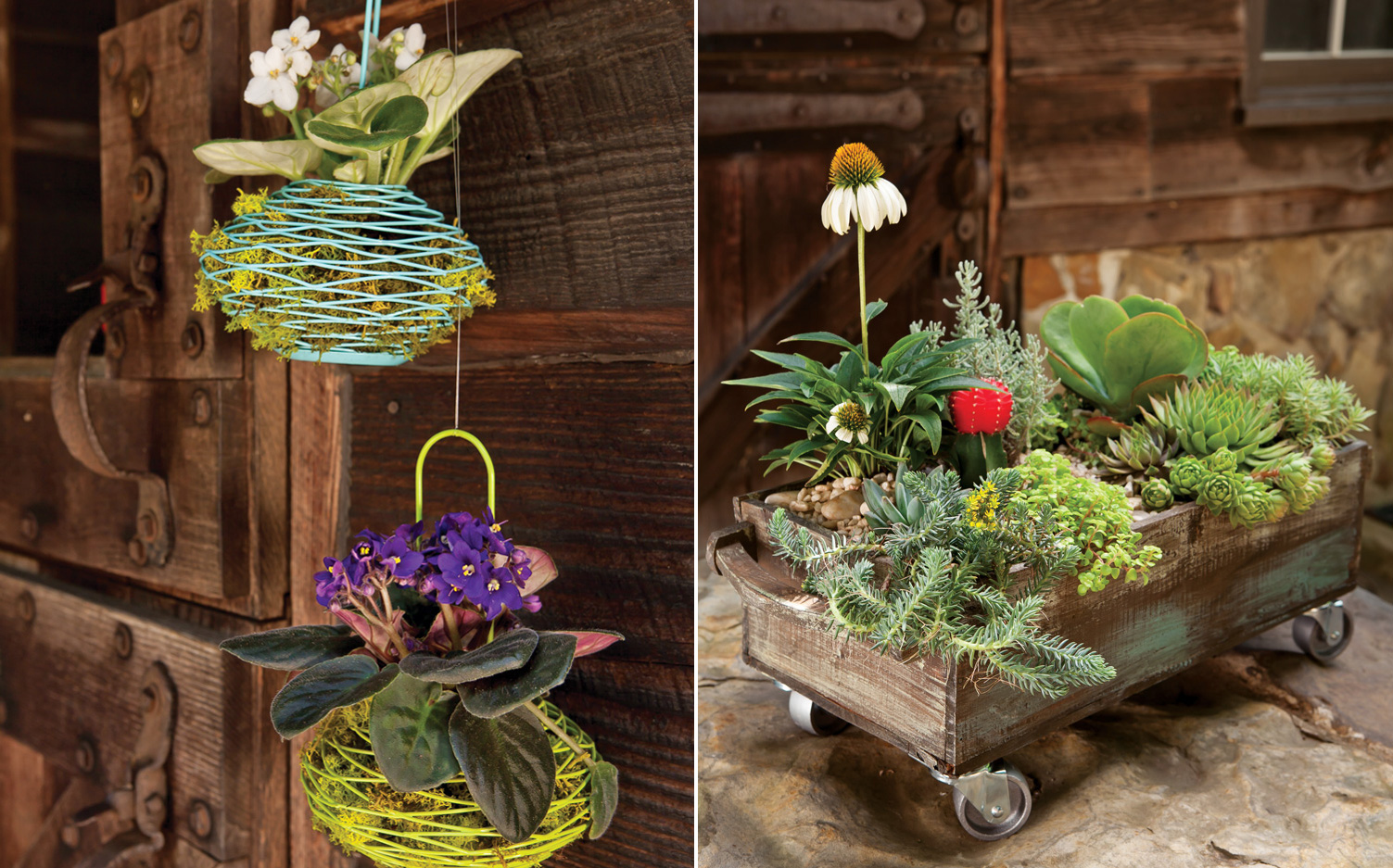 A picture of creative floral containers