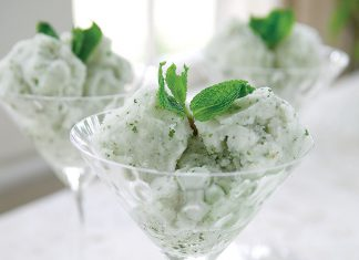 A picture of Mint Sorbet.