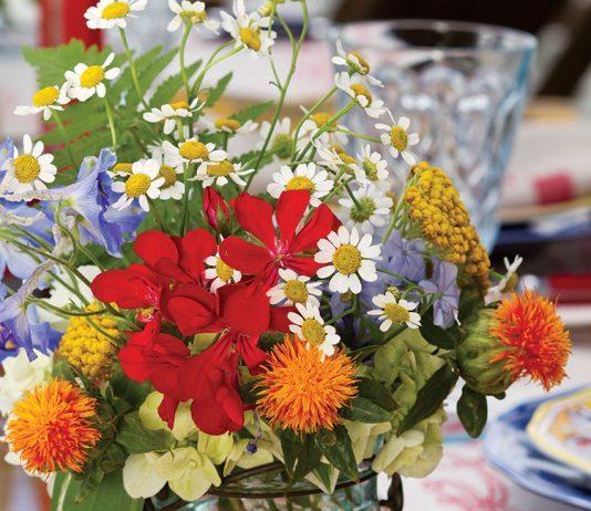 Summer Blooms, wildflowers