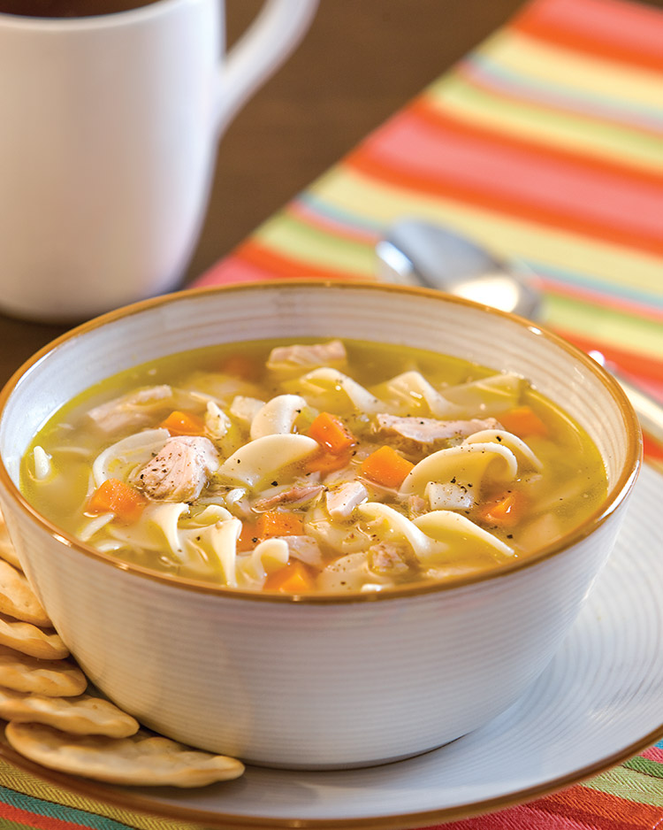 Chicken Noodle Soup Winter Soup