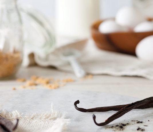Vanilla: Basic Indulgence