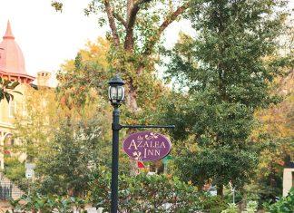 Southern Spotlight: Garden Hideaway