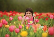 Festival of the Tulips