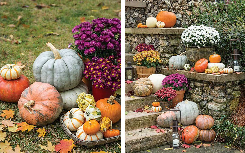 The Joy of Pumpkins and Porches